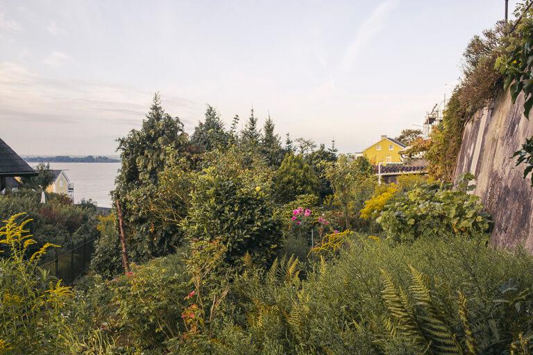 Сад в Треппенфиртеле, Бланкенезе, Гамбург