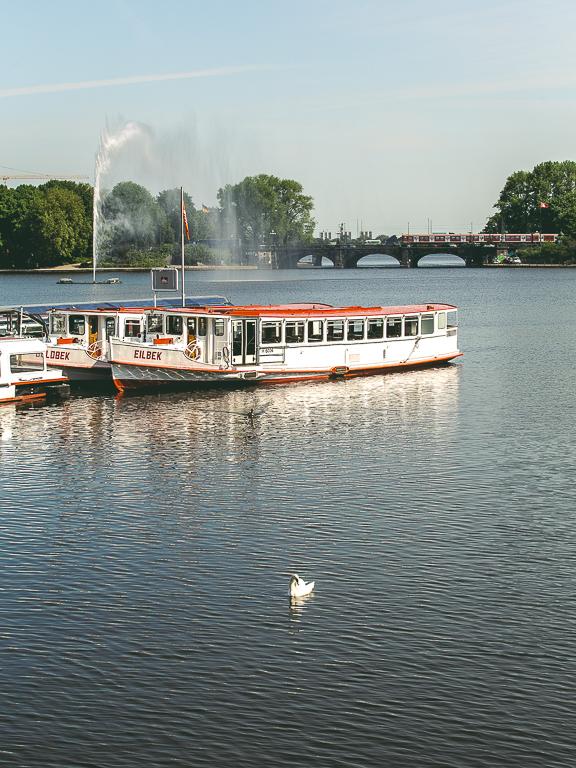 Лебедь на Альстере, Гамбург